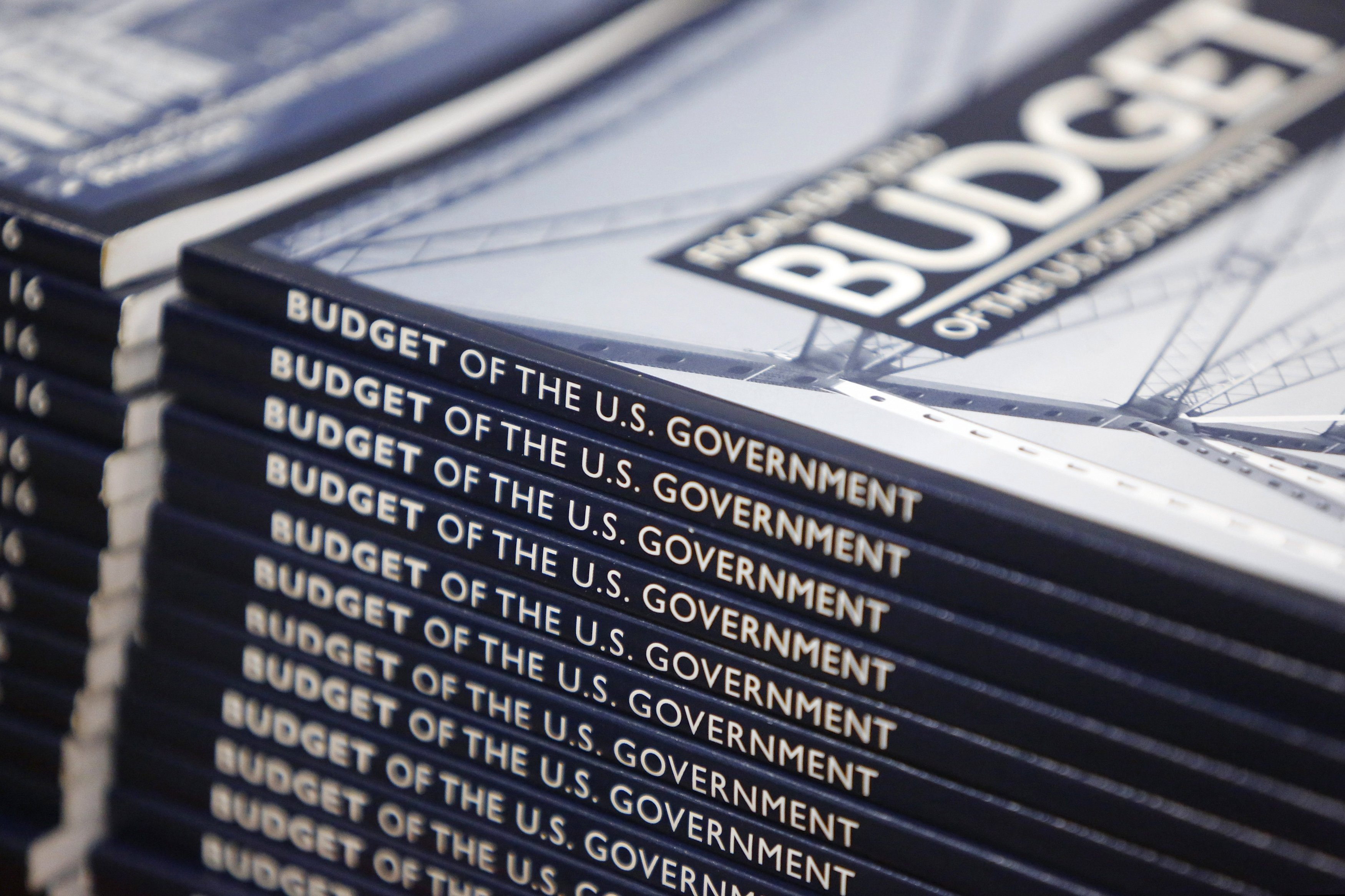 Copies of the US Federal Budget